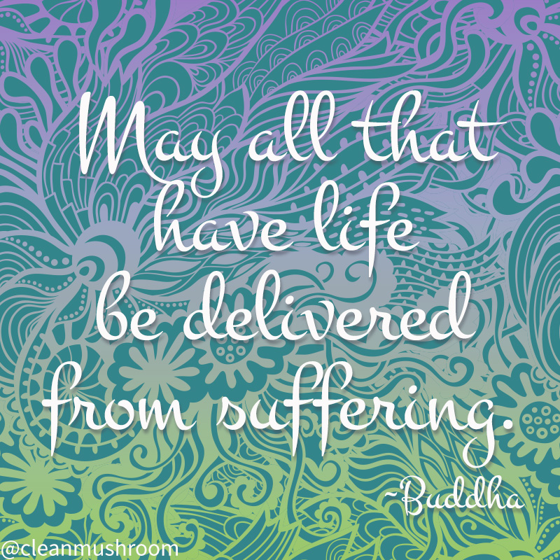 graphic with quote from Buddha